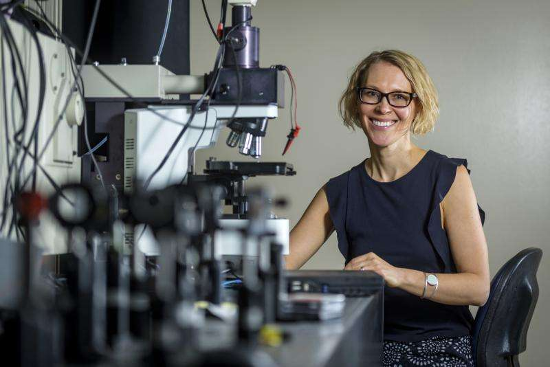 Researchers explore new chapter of physics