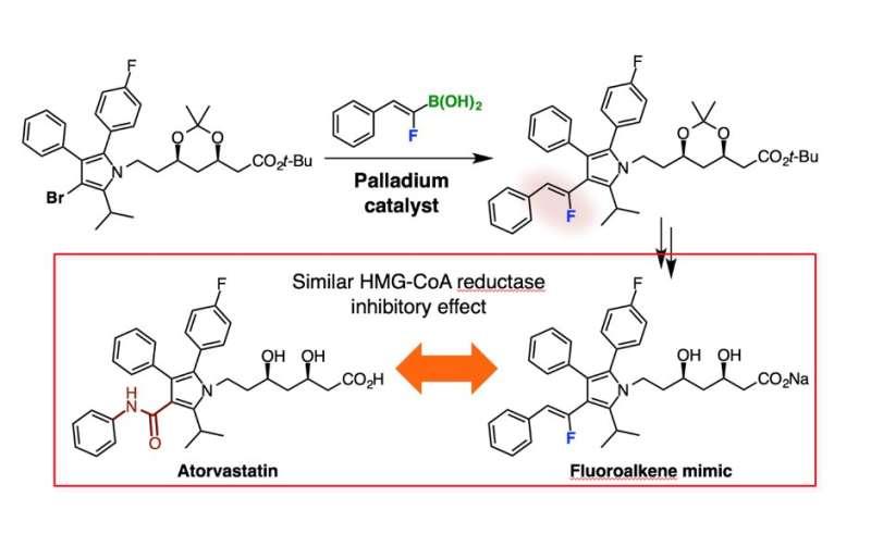 Osaka University chemists unlock the potential of fluoroalkenes