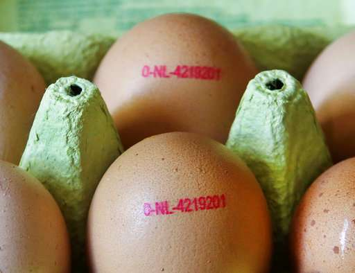 EU says Belgium took weeks to notify tainted egg discovery
