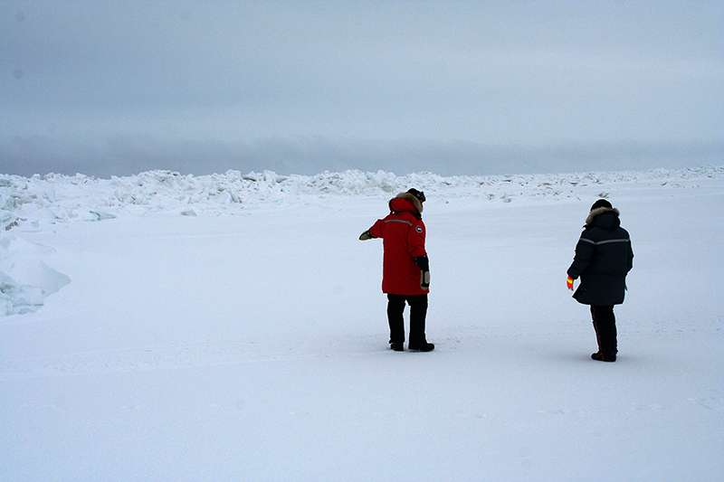 First measurements of iodine in the Arctic reveal questions about air pollution