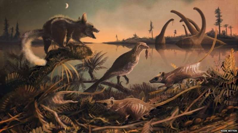 Man's earliest ancestors discovered in southern England