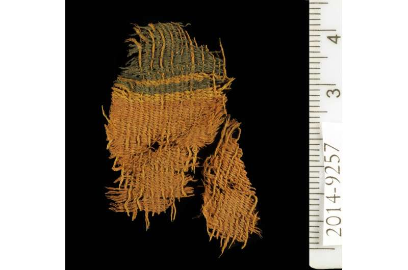 3,000-year-old textiles are earliest evidence of chemical dyeing in the Levant