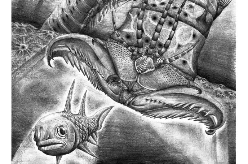 400 million year old gigantic extinct monster worm discovered in Canadian museum