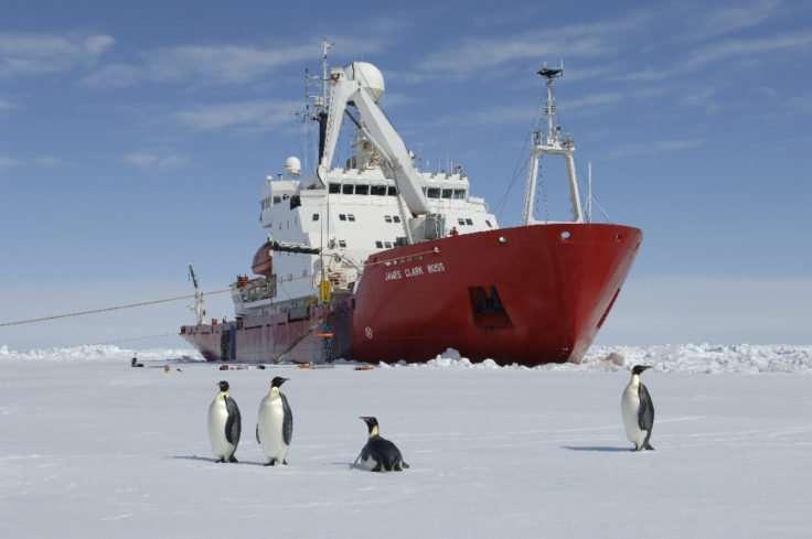 Scientists to visit hidden Antarctic ecosystem after giant iceberg calving