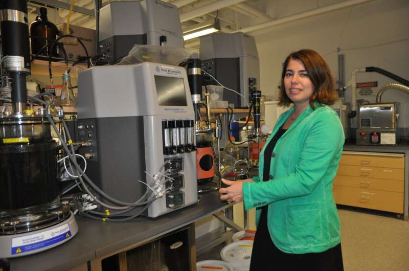 UBC researchers take the 'stink' out of wastewater treatment