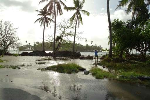 Climate change poses a serious threat to Pacific island wildlife, such as on the Marshall Islands, pictured in March 2016 when t