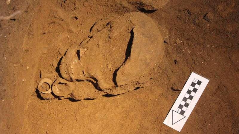 Archaeologist finds world's oldest funereal fish hooks
