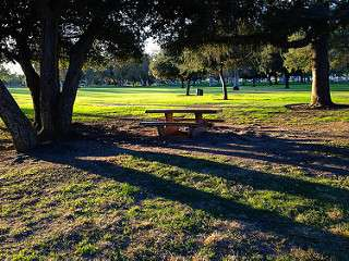 Researchers find antibiotic-resistant superbugs in four California parks