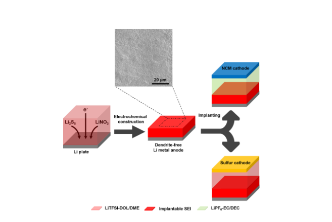 Implantable Solid Electrolyte Interphases to Suppress Dendrite Growth in Li Metal Batteries