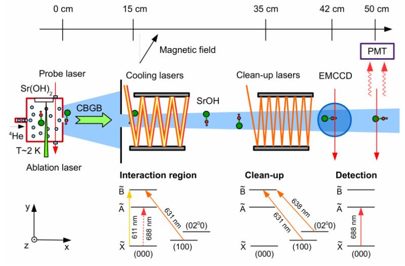 Laser cooling a polyatomic molecule