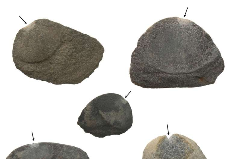 Groundbreaking discovery of early human life in ancient Peru