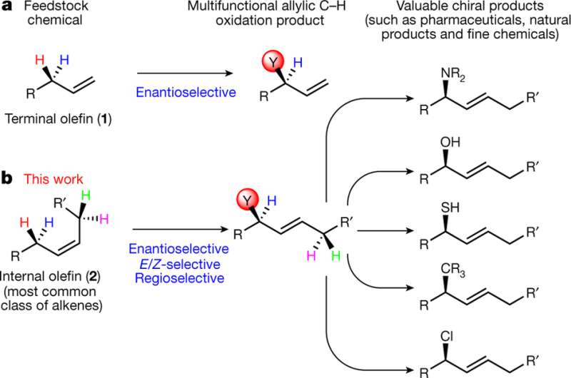 Researchers report chemical reaction with potential to speed drug development