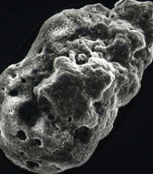 Scientists find fossilised cosmic dust in white cliffs of Dover
