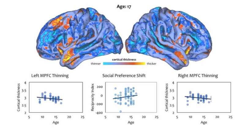 Teens' ability to consider the intentions of others linked to structural changes in the brain