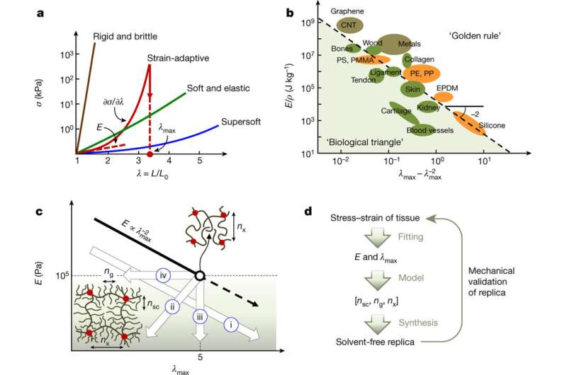Code for fine-tuning elastomers to mimic biological materials