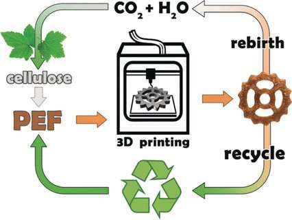 3-D printing with a biobased polymer for CO2-neutral manufacturing