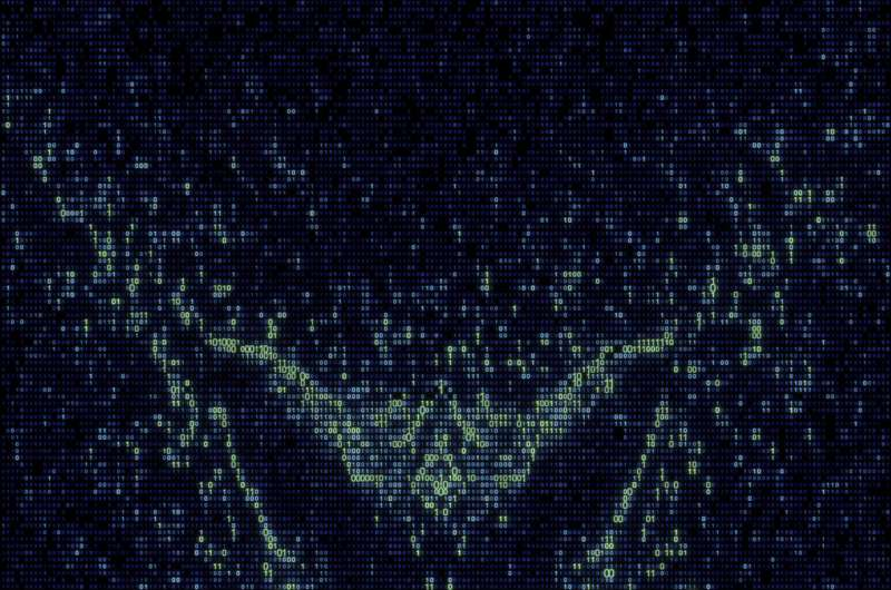 Butterfly emerges from quantum simulation