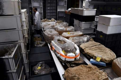 Unlocking the mysteries of the ancient cold case through a raft of high-tech tests is likely to take up to seven years.