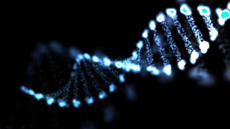 Researchers identify genes fueling neuroblastoma spread