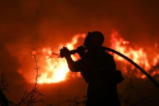 A firefighter battles a wildfire as it burns along a hillside near homes in Santa Paula, California that has forced thousands to