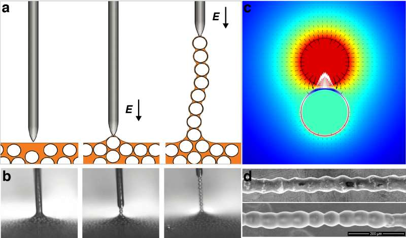 International team solves mystery of colloidal chains
