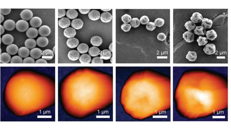Study shows how rough microparticles can cause big problems