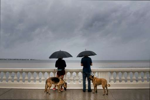 A couple look at the receding water as they walk their dogs on Bayshore Boulevard in Tampa, Florida