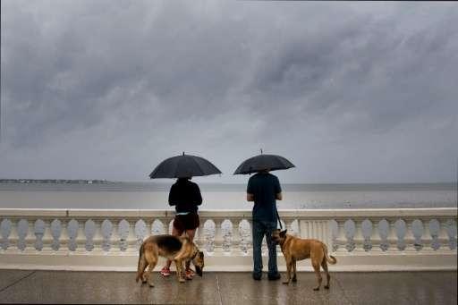 A couple walk their dogs on Bayshore Boulevard in Tampa, Florida, ahead of Hurricane Irma's landfall
