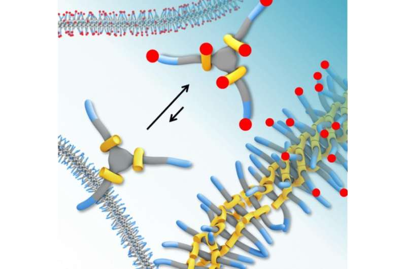 Adhesive behavior of self-constructive materials measured for first time