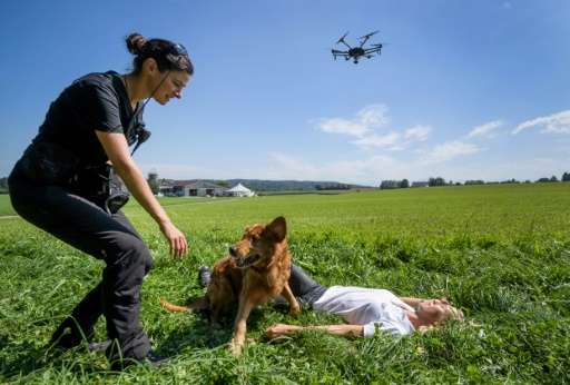 A drone flies by as a dog and handler from the Swiss disaster dog association Redog take psrt in a simulation rescue exercise