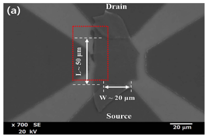 Advanced molybdenum selenide near infrared phototransistors