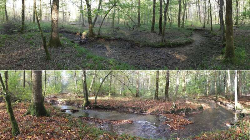 Advancing the science and management of European intermittent rivers and ephemeral streams