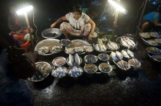 A fishmonger uses battery-powered portable lamps in Yangon in Myanmar, where less than a third of the population have regular ac