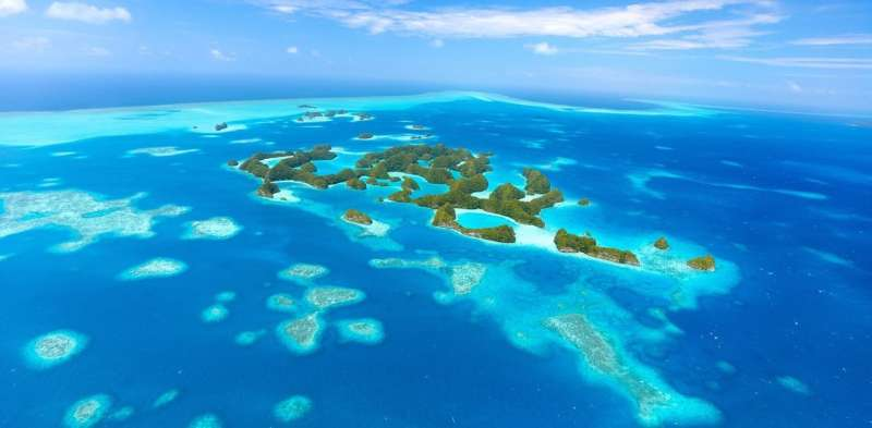 A huge marine reserve in the Pacific will protect rich tourists rather than fish