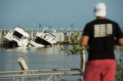 A man looks at damaged boats at a marina in Miami