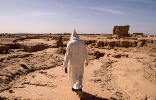 A man walks through what used to be an oasis near the southeast Moroccan town of Erfoud in the Sahara Desert