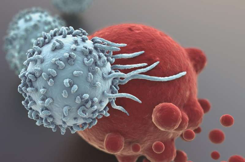 A novel protein regulates cancer immunity and could offer a therapeutic target