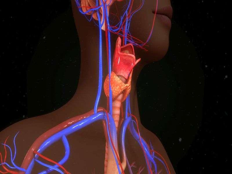 Artificial 'Voice box' implant helps cancer patient speak