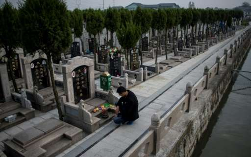 A young man pays his respects to his ancestors at a cemetery in Shanghai