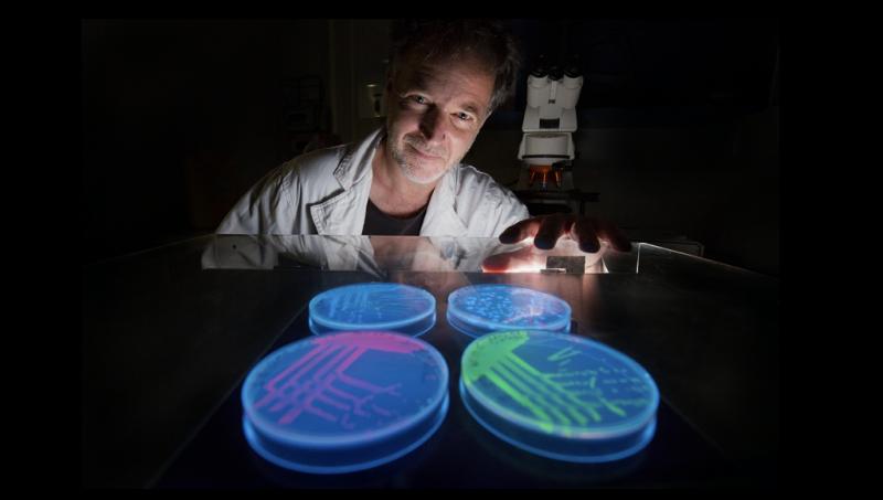 Bacteria in estuaries have genes for antibiotic resistance