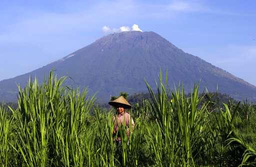Bali volcano's alert status lowered after decreased activity