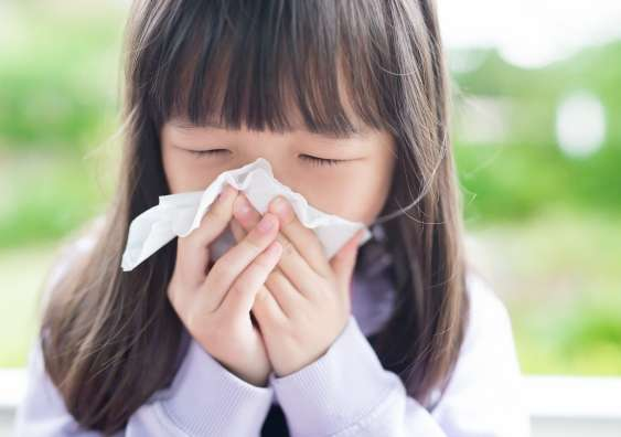 Better pollen warnings for asthmatics may prevent hospital visits