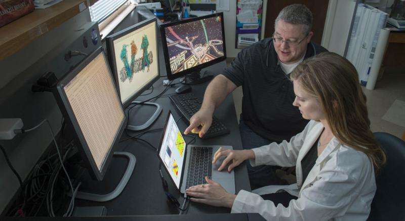 Cancer researchers tap human intuition of video gamers in quest to beat cancer