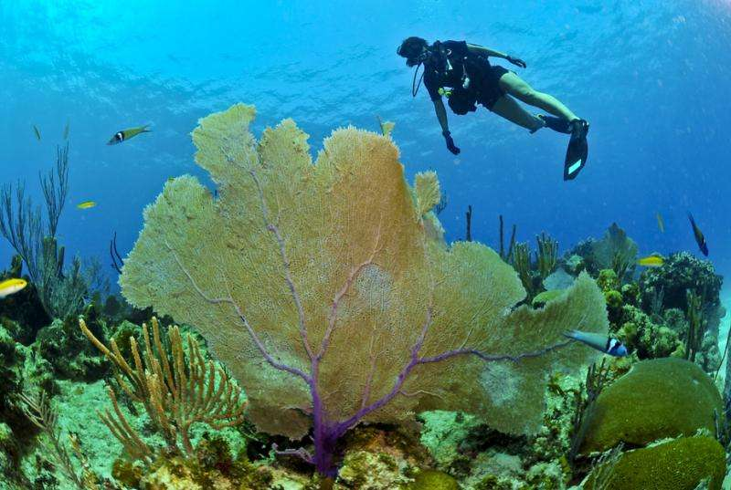 Can ocean science bring Cuba and the United States together?