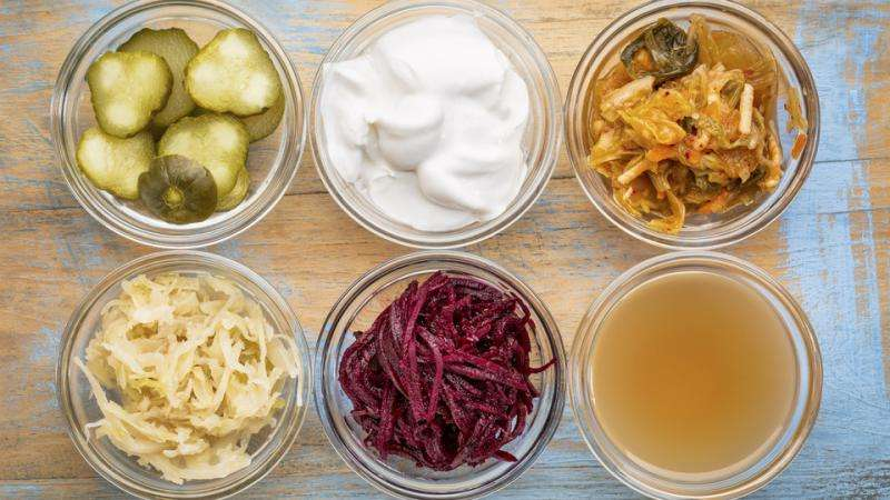 Can yogurt each day keep the doctor away?