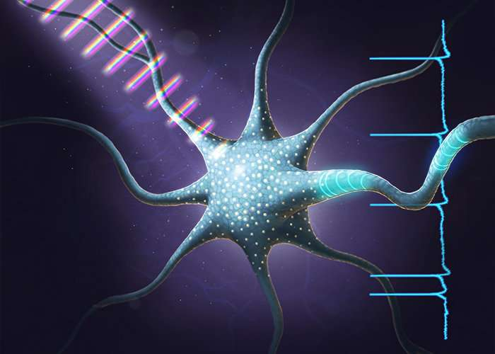 Carefully crafted light pulses control neuron activity