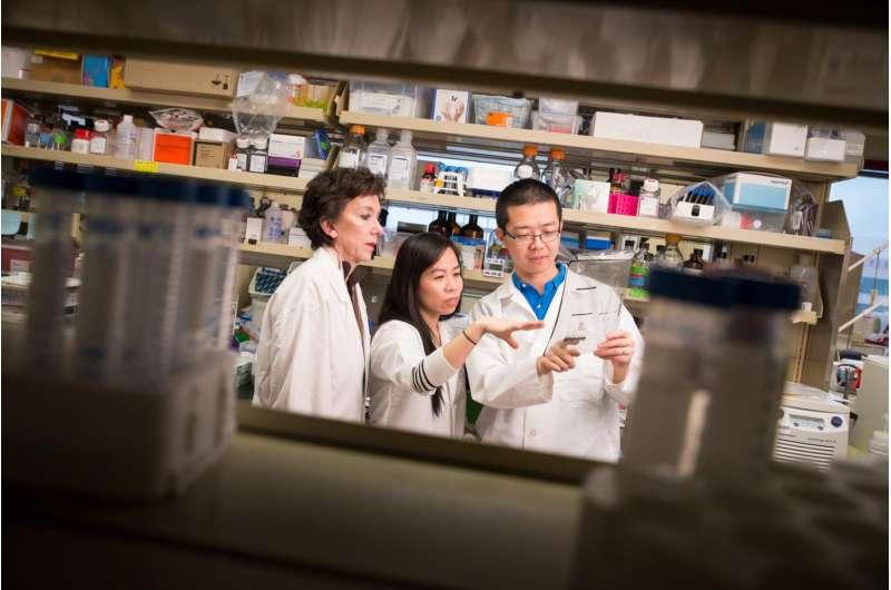 Caution needed for drugs in development for most common malignant pediatric brain tumor