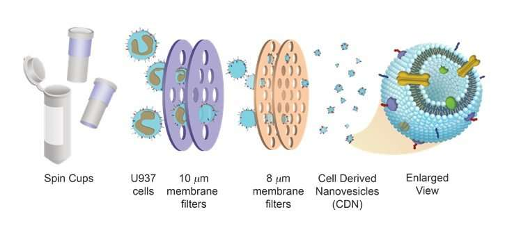 Cell-derived drug delivery systems