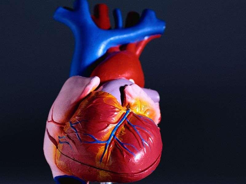 Centrifugal-flow left ventricular assist device noninferior