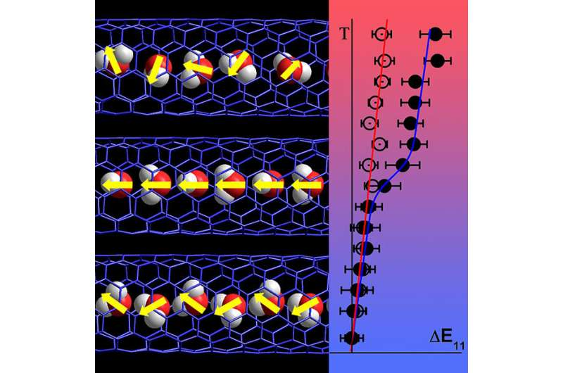 Confined within tiny carbon nanotubes, extremely cold water molecules line up in a highly ordered chain
